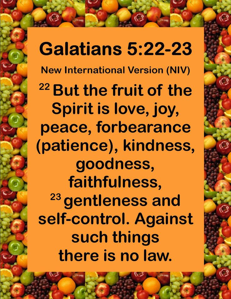 Fruit of the Spirit Bible Study Kit - proverbs31mentor.com