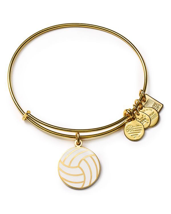 Alex and Ani Team Usa Volleyball Expandable Wire Bangle