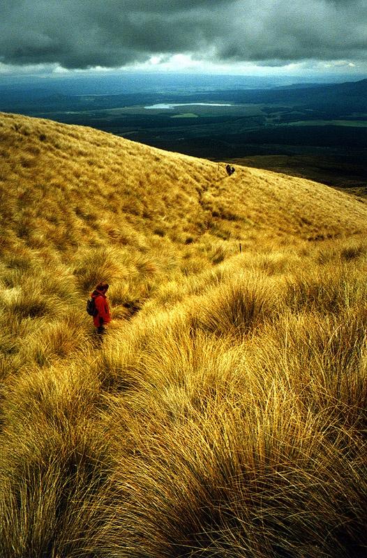 Tongariro Crossing - New Zealand #hiking #walking #newzealand