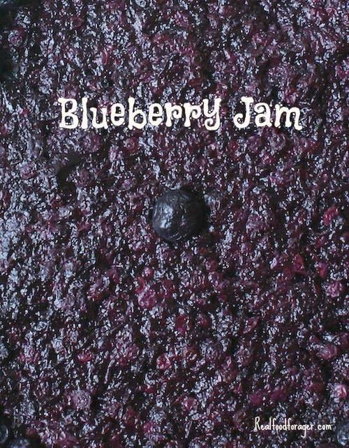 Recipe: Blueberry Jam (Paleo, SCD, GAPS AIP) post image