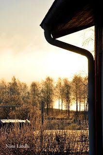 Frostmorgon Foto: Nina Lindh