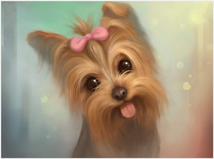 Yorkshire Terrier Dog Painting Wallpaper | yorkshire terrier dog painting wallpaper 1080p, yorkshire terrier dog painting wallpaper desktop, yorkshire terrier dog painting wallpaper hd, yorkshire terrier dog painting wallpaper iphone