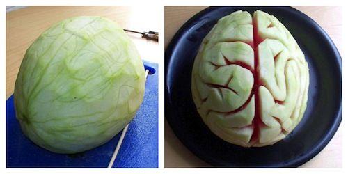 Van meloen tot hersenen! Freaky