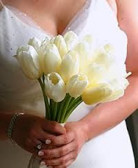 wedding tulips - Google Search