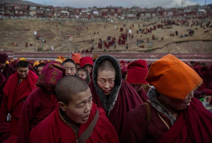 Daily Life, 2nd prize stories. Tibetan Buddhist nuns stand following a chanting session in Sertar county, Garze Tibetan Autonomous Prefecture, Sichuan province, China, Oct. 30, 2015.