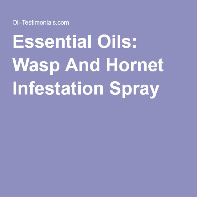 Essential Oils: Wasp And Hornet Infestation Spray