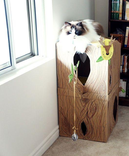 Anie Inspired: DIY// New Cardboard Cat House