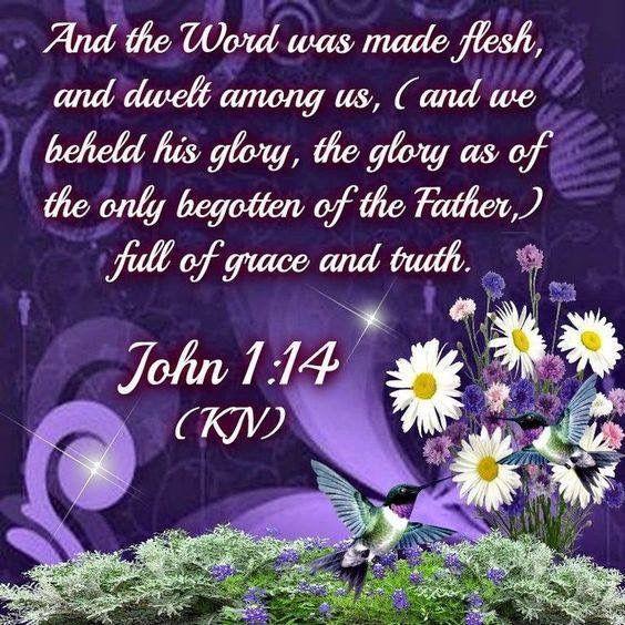 John 1:14 KJV