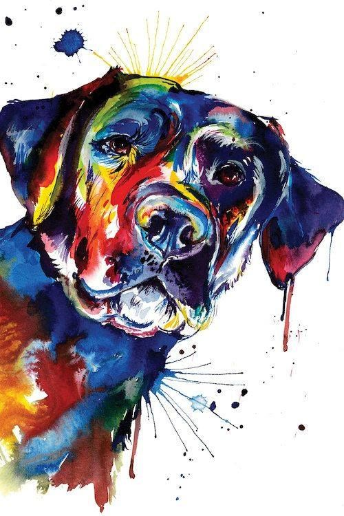 Blacklab Dogart Blacklabart Labrador Retriever Art Labrador