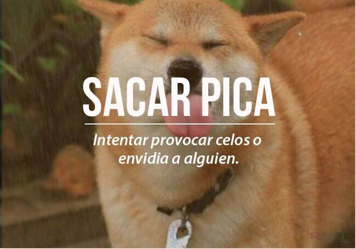 Chilean Slang: sacar pica