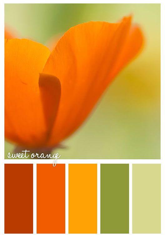 17 best ideas about orange color schemes on pinterest - Burnt orange color scheme ...