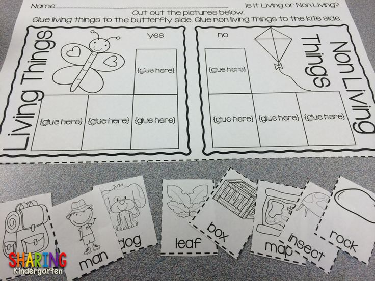 Printable activities for Living and Non Living things