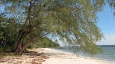 Parc national de Ream - Cambodge
