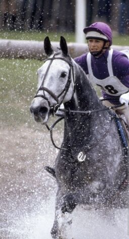 Cross Country in Eventing….