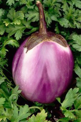 How to Freeze Raw Eggplant