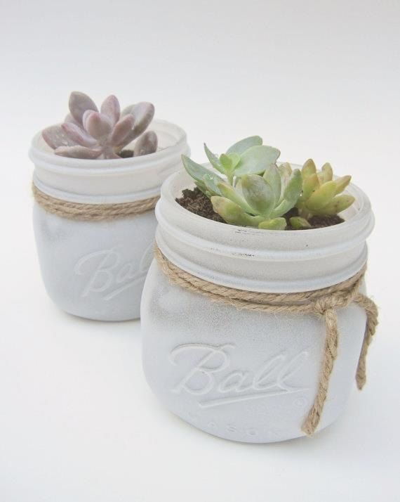 Suculentas en blanco pintado Mason Jar - Shabby Chic Vintage favorece el país…