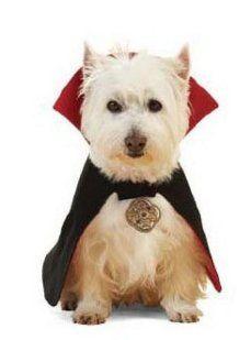 Perfil | fidel | Patrón disfraz de Drácula para tu perro