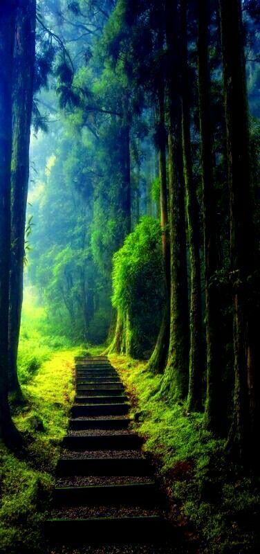 Keep on Hiking.. Enchanted ❤