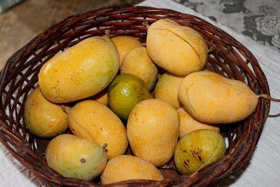 Caliandra do Cerrado: Banha de galinha - Uma fruta do bioma Cerrado