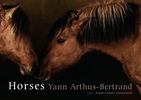 yann arthus bertrand horses - yahoo Image Search Results