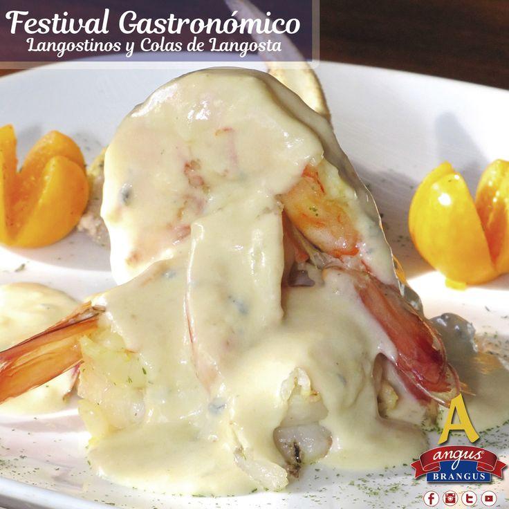 Hoy sugerimos una deliciosa receta de langostinos flameados en brandy, bañados en salsa bechamel y queso azul. Exquisito!!!   Reservas: 2321632 - 310 7006602. Cra. 42 # 34 - 15 / Km. 1 Vía las Palmas. www.angusbrangus.com.co  #parrilla #AngusBrangus #Restaurantes #Medellín #Carnes #festivalgastronomíco #Medellíneats #MedellínTown #MedellínCity #Langostinosylangostas