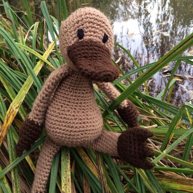 """93 Likes, 5 Comments - Kerry Lord @ TOFT (@toft_uk) on Instagram: """"NEW #edsanimals subscription club exclusive patterns!! Meet Caroline the Platypus, November's…"""""""