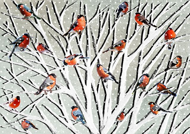 winter collage | Flickr - Photo Sharing!