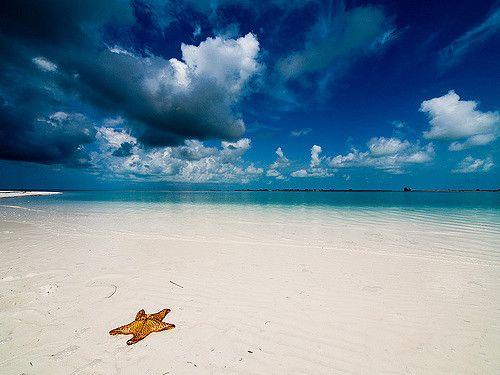 Resultado de imagen de playa Paraiso, Cayo Largo