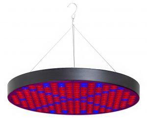 10-ppunson-250-leds-round-grow-lamp