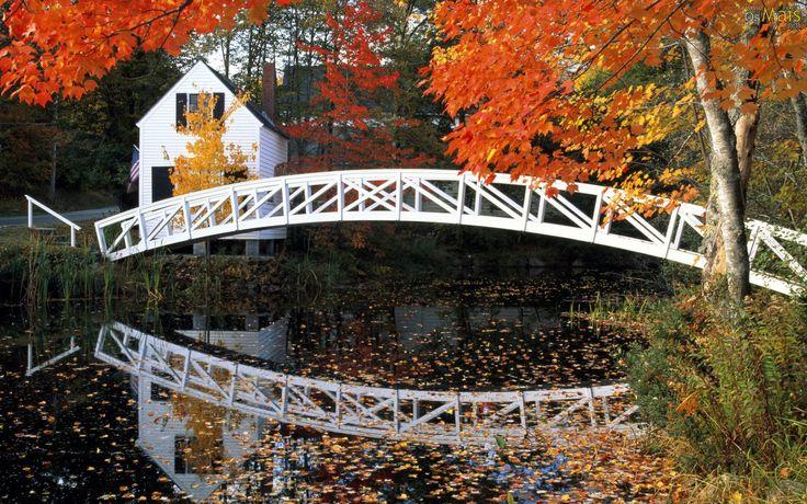 cores do outono 6