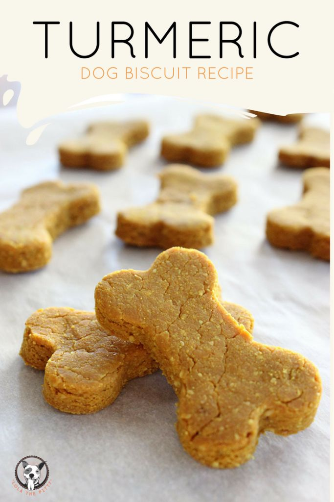 Turmeric Dog Treat Recipe via Lolathepitty.com! My dogs loved this recipe, plus it's loaded with healthy ingredients such as turmeric and flax seed. The end result is a light and crispy dog treat that is easy to chew. Your dog will love these!