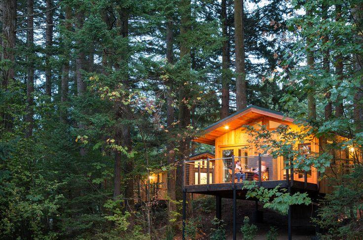 The Tree Houses of Skamania Lodge | Architect Magazine | MG2, Stevenson, WA, USA, Hospitality, Costco Wholesale Corporate Headquarters