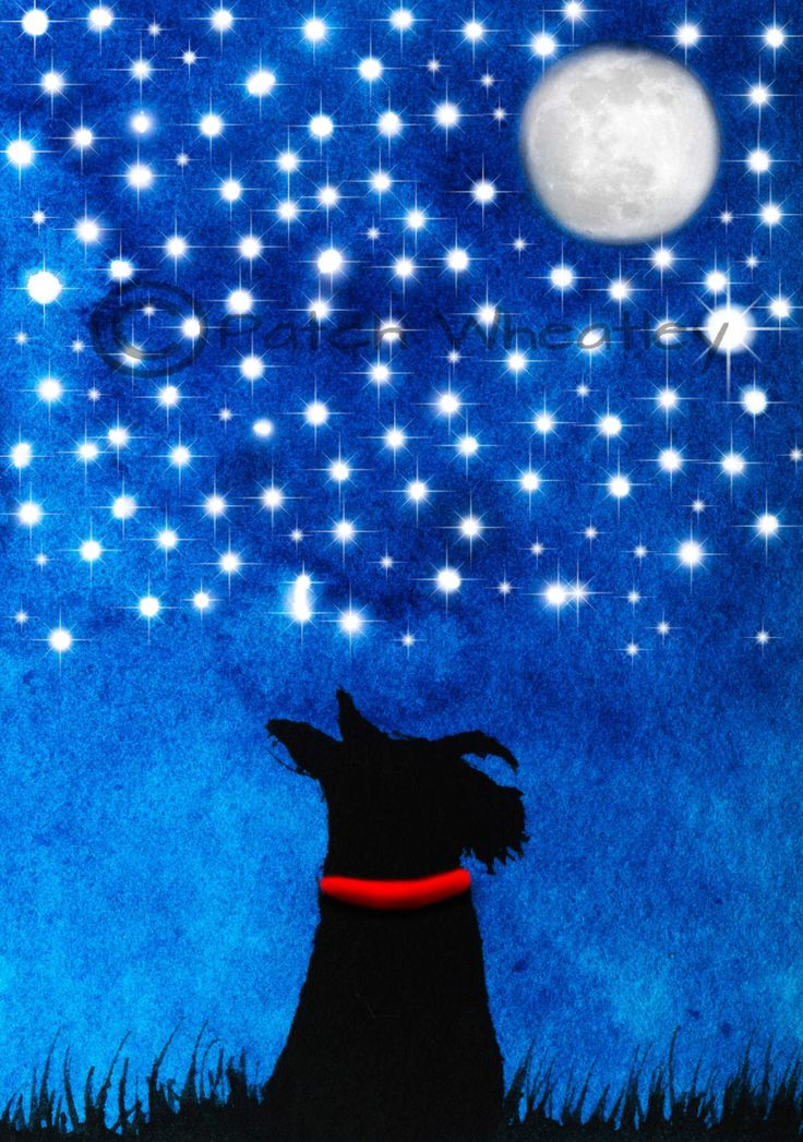 A personal favourite from my Etsy shop https://www.etsy.com/uk/listing/252345670/scottie-dog-art-print-scottish-terrier