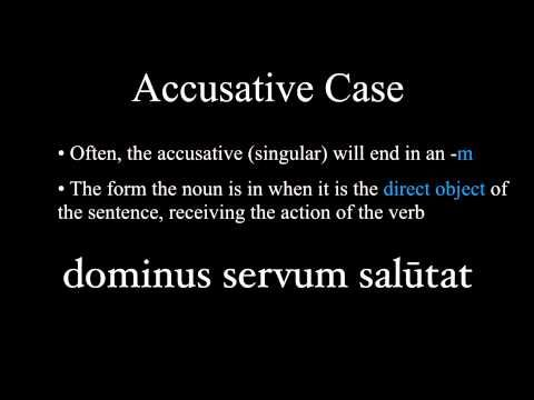 The Nominative and Accusative Cases - YouTube