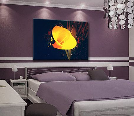Yellow Calla flower canvas print on purple nature by Design4Homes