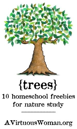 10 links to help you study or teach about trees
