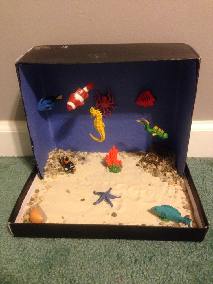 7 best science projects images on pinterest boxing classroom ocean habitat diorama science projectsschool sciox Image collections