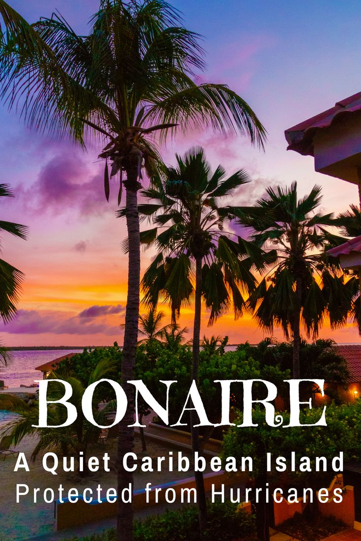 Vacation idea for a quiet, relaxed Caribbean island: Bonaire has great scuba diving, is protected from hurricanes, and has a wild natural beauty, as shown in these photos!