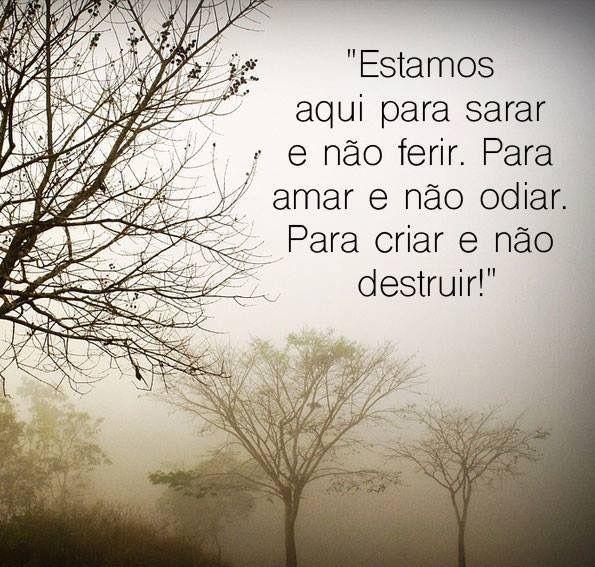 Amor ❤️