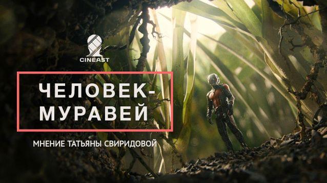 Статьи и интервью, блоги на Cineast. Человек-муравей / Мнение | Человек-муравей, Ant-Man, Пол Радд