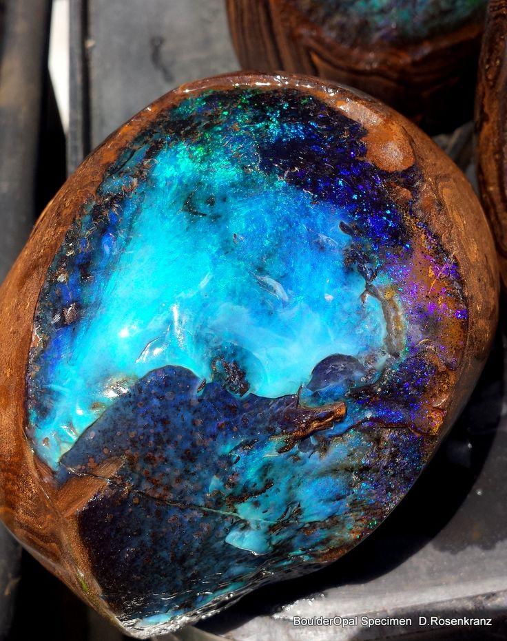 Large full polished Boulder Opal Specimen reveals the interior blue fire.