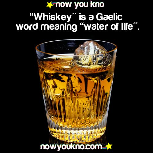 """Whiskey"" is a Gaelic word meaning ""water of life"""