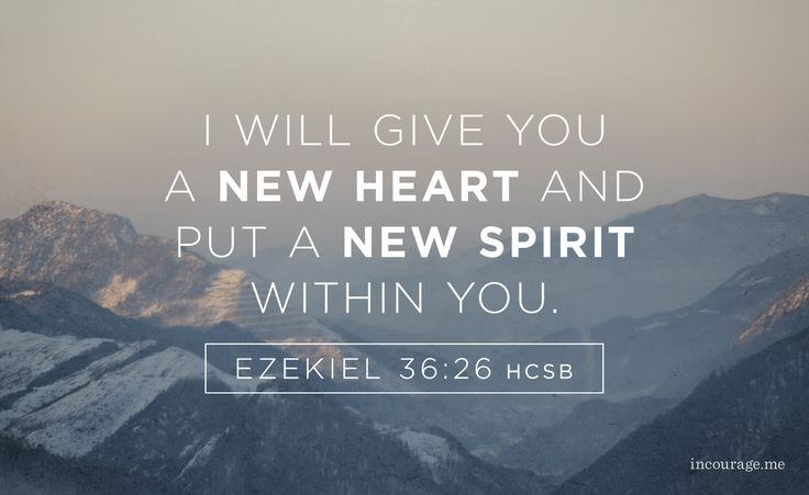 """I will give you a new heart and put a new spirit within you; I will remove your heart of stone and give you a heart of flesh."" Ezekiel 36:26"