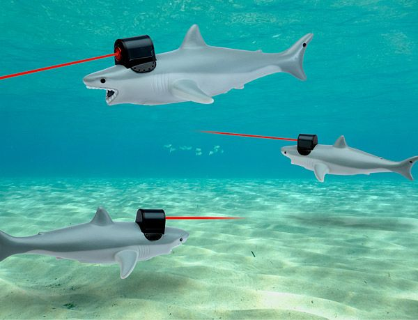 Shark With Frickin' Laser Pointer on Head For All Your Evil Doing -  #austinpowers #drevil #lasers #sharks