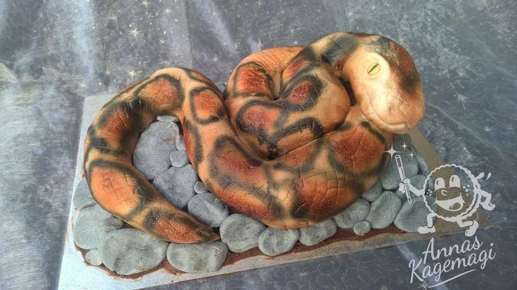 Snake cake for my sons birthday tomorrow.
