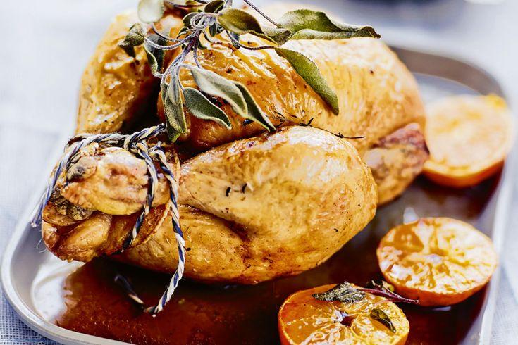 Pour les fêtes de fin d'année, rien que tel que le chapon. Découvrez notre recette au foie gras avec des clémentines. Un régal.
