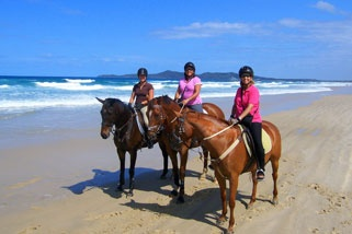 Horse Riding Noosa Bush and Beach for 2 Hours