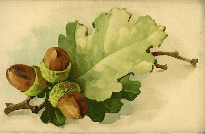 Vintage Catherine Klein fall oak leaf and acorns : Little Birdie Blessings
