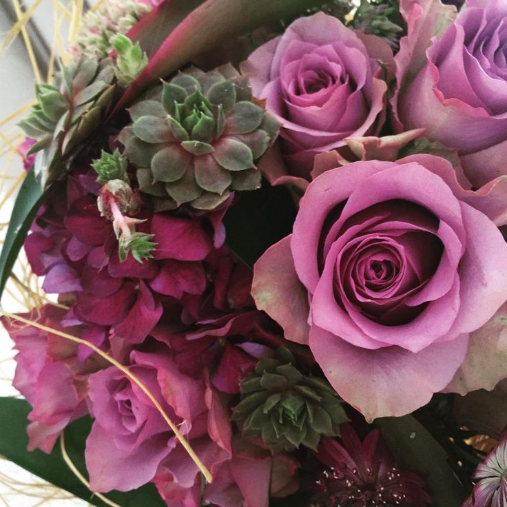 "Katri Gummerus on Twitter: ""#perjantaipuketti #fridayflowers @PKoppi @PirjoP1 @HolappaMarianne @JyrkiJalkanen @MinnaFloral @HinskalaTaina http://t.co/QTy8DWgpPe"""