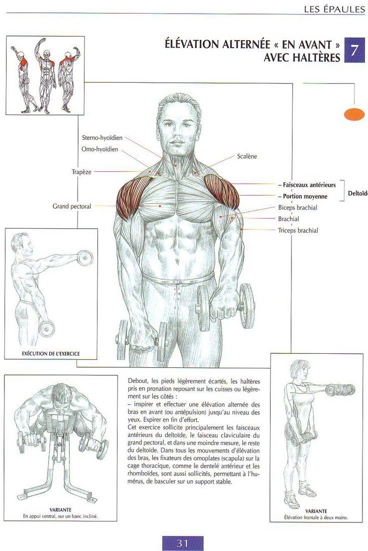 62 best sports images on Pinterest | Workouts, Exercise workouts and Gym